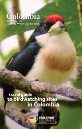 El Dorado Bird Reserve - Colombia Travel