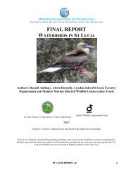 St Lucia - BirdLife International