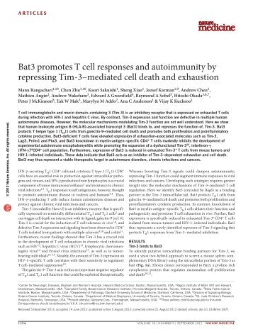 Bat3 promotes T cell responses and autoimmunity - Blogs at UMass ...