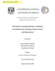 Microscopía, Microespectrometría y Modelado Termodinámico de ...