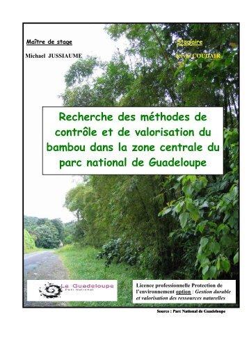 Recherche des méthodes de contrôle et de valorisation du bambou ...