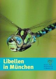 Libellen in München (1,3 MB, PDF)
