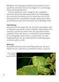 Heuschrecken in München - Bund Naturschutz - Seite 6