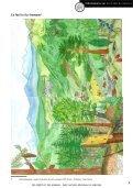 Téléchargez le dossier sur la forêt - Chalet l'Oasis - Page 6