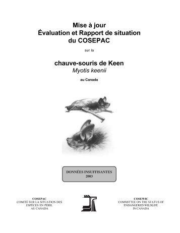 Chauve-souris de Keen (Myotis keeni) - Publications du ...