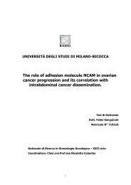 View/Open - Università degli Studi di Milano-Bicocca