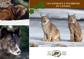 Les animaux à fourrure du Canada - Fur Institute of Canada