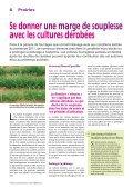 Fourrages et tourteaux - Agriculture de Conservation - Page 3