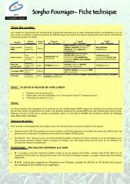 note fourrage sorgho 2011.pdf