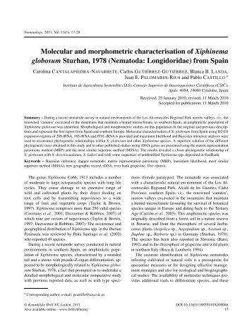 Molecular and morphometric characterisation of Xiphinema ...