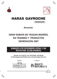 HARAS GAVROCHE - Zambrano & Cía.