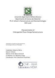 Università degli Studi di Milano-Bicocca Dipartimento di Scienza dei ...