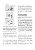 A PET study on brain control of micturition in humans - Page 6