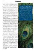 Der der Schöpfung - Werner Gitt - Seite 5