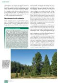 Article original - Waldwissen.net - Page 5