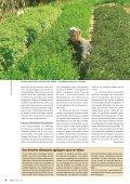 Soins naturels pour la peau et les cheveux Page 4 ... - Bioactualites.ch - Page 6