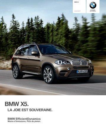 BMW X.