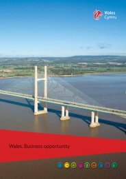 'Wales: business opportunity' (8.41MB) - Business Wales