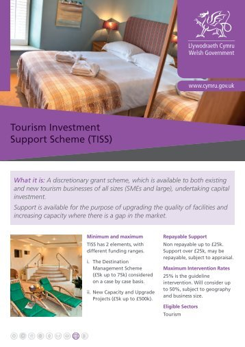 Tourism Investment Support Scheme (TISS) - Business Wales