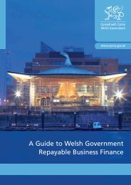 A Guide to Welsh Government Repayable ... - Business Wales