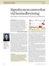 Signalsystem samverkar vid bennedbrytning - Tandläkartidningen