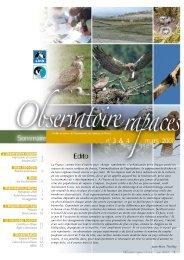 Observatoire rapaces 3-4.pdf - LPO Mission rapaces