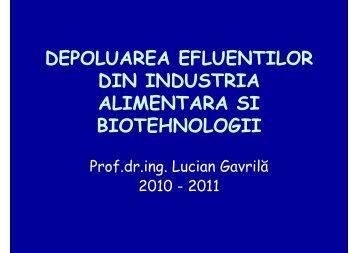Lucian Gavrilă – DEPOLUAREA EFLUENTILOR - Cadre Didactice