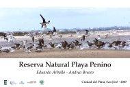 libro digital reserva natural playa penino - Aves Uruguay