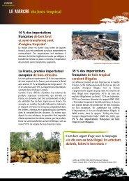 dossier de presse - Je dis NON au Bois Illégal - WWF France