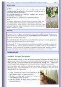 Cultures maraîchères Grandes cultures Mot du Directeur ... - ONSSA - Page 2