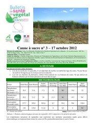 Canne à sucre n° 3 – 17 octobre 2012 - La Chambre d'Agriculture ...