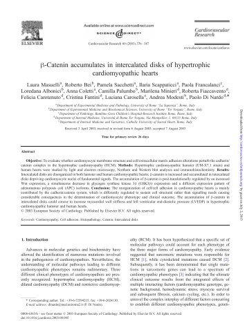 h-Catenin accumulates in intercalated disks of hypertrophic ...