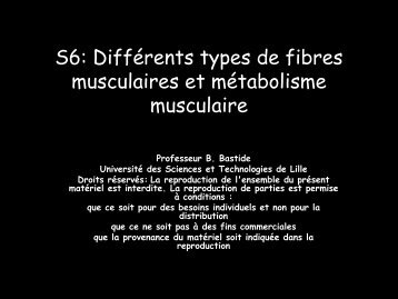 S6 : DIFFERENTS TYPES DE FIBRES MUSCULAIRES ET ...