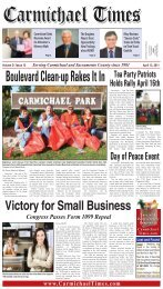 Boulevard Clean-up Rakes It In - Carmichael Times