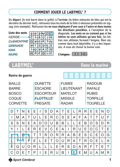 Comment Jouer Le Labymel Sport Cérébral