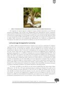 Multiplication végétative d'arganiers par greffage, drageons et ... - Page 5