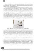 Multiplication végétative d'arganiers par greffage, drageons et ... - Page 6
