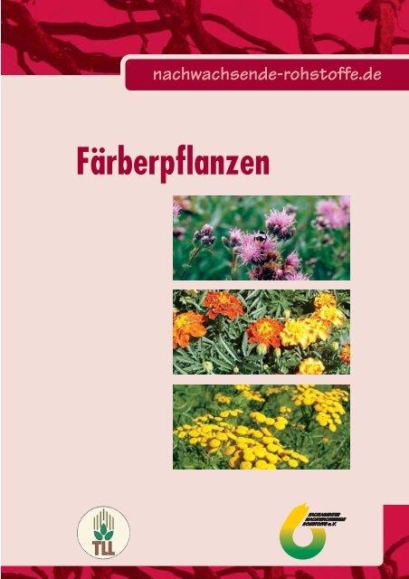 Färberpflanzen - nova-Institut GmbH