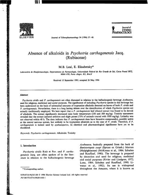 Absence of alkaloids in Psychotria carthagenensis