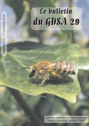 Bulletin du GDSA-29 n°21 - GDSA 29 - Free