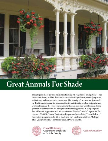 Great Annuals For Shade - Cornell Cooperative Extension of Suffolk ...