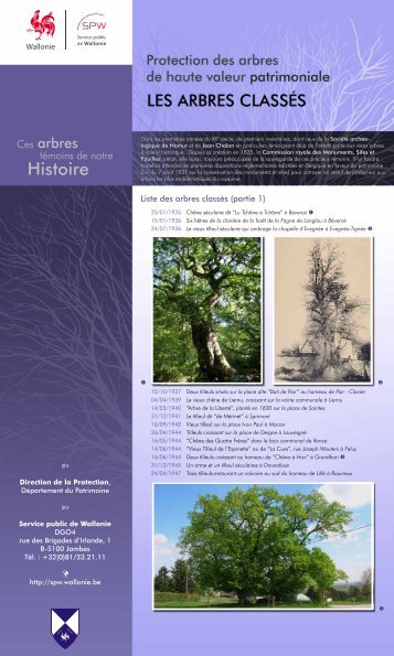 Les arbres classés