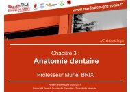 Anatomie dentaire - Université Virtuelle Paris 5