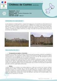 Château de Castries (SI00000495) - DREAL Languedoc-Roussillon