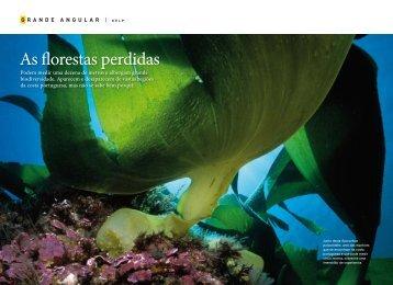 Artigo para download - CCMAR - Universidade do Algarve