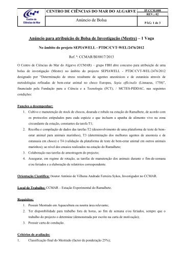 Download new advert details (in portuguese) - CCMAR ...