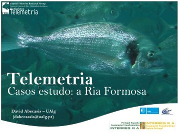 Casos estudo: a Ria Formosa - CCMAR - Universidade do Algarve