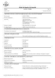 [FR] - MASTIC VITRIER - 2005-03-03 - Laverdure