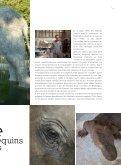 programme de Chevetogne un peu cochon 2012 - Domaine ... - Page 7