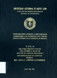 Papilomavirus humano e inestabilidad cromosomica en pacientes ...